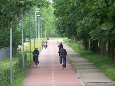 Image result for green cycle path