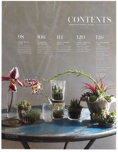 from Martha Stewart Magazine; table of contents design