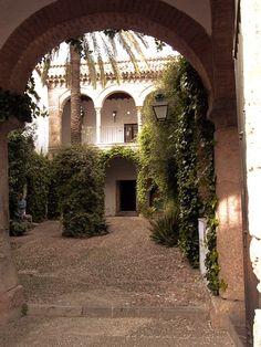 cordoba casa andalusi   https://www.pinterest.com/safiyabl/plantas-para-patio/