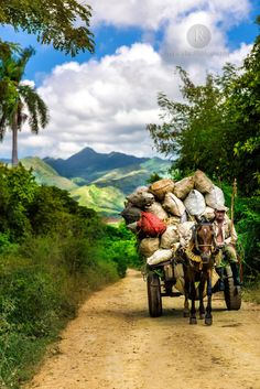 As your local Cuba host we specialise in creating individual Cuba tours. Our proven Cuba travel services guarantee a perfect trip to Cuba. Trinidad, Cuba Tours, Viva Cuba, Cuba Travel, Havana, Beautiful Pictures, Scenery, Old Things, Journey