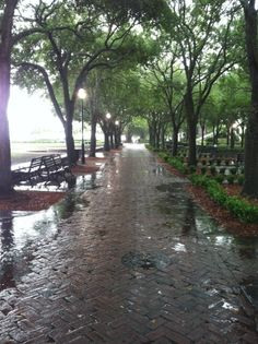 Charleston Waterfront Park in the rain  ~ lovely Photo taken by me