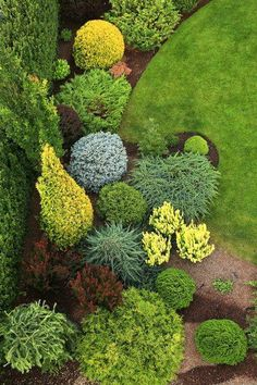 Home Garden Design .Home Garden Design Landscaping Plants, Outdoor Landscaping, Front Yard Landscaping, Landscaping Ideas, Front Gardens, Small Gardens, Outdoor Gardens, Evergreen Landscape, Evergreen Garden