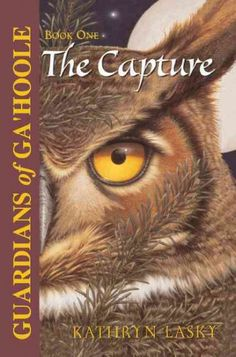 When Soren, a barn owl, arrives at St. Aggie's, a school for orphaned owls, he suspects trouble and with his new friend, a clever elf owl named Gylfie, embarks on a perilous journey to save all owls from the danger at St. Aggie's.