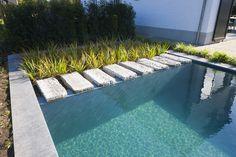 Koi Pond Design, Small Pool Design, Landscape Design, Backyard Pool Landscaping, Small Backyard Pools, Fish Pond Gardens, Moderne Pools, Natural Swimming Pools, Pool Houses