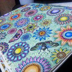 #Repost @nathagostini ・・・ flowers. #terapia #calmante #colors #colorindo #love…