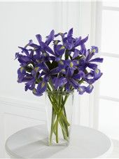 The Iris Riches Bouquet is a slender vase filled with bold blue iris. This vase of blue flowers is available all year long and is florist delivered.