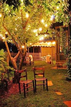 Backyard at night with party lights in the trees!