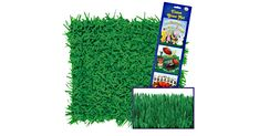 I found this great Birthday Party idea on BirthdayExpress.com. Green Grass Tissue Mats, Birthday Express helps create memories that last a lifetime - click here to start the fun!