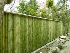 bamboo fence Bamboo is a sustainable natural product and the alternative to (tropical) hardwood. It is strong and grows fast up to 36 cm per day Bamboo Garden Fences, Garden Fence Panels, Fence Design, Garden Design, Cerca Natural, Bamboo House Design, Bamboo Building, Natural Fence, Bamboo Architecture