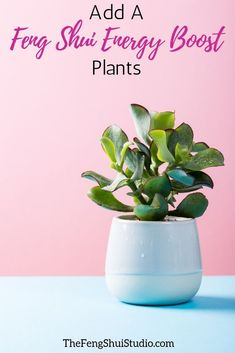 Plants add vital Ch'i energy to a space and are a Feng Shui Energy Boost. - Plants add vital Ch'i energy to a space and are a Feng Shui Energy Boost. Create your Feng Shui H - Feng Shui Basics, Feng Shui Rules, Feng Shui Art, Feng Shui Energy, Feng Shui Tips, Feng Shui For Beginners, Feng Shui Studio, Feng Shui Bathroom, Feng Shui Plants