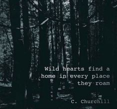 Trendy Travel Quotes Wanderlust Gypsy Soul Book – Best Quotes images in 2019 Wild Quotes, Home Quotes And Sayings, Heart Quotes, Quotes To Live By, Travel Quotes Wanderlust, Travel The World Quotes, Best Travel Quotes, Travel With Love Quotes, Quotes About Travel