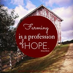 Buttermilk Biscuits ever! (and easiest!) Farming is a profession of hope.Farming is a profession of hope. Farm Life Quotes, Farm Sayings, Country Life, Country Girls, Agriculture Quotes, Ag Quote, Encouragement Quotes, Faith Qoutes, Farms Living
