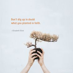 """""""Don't dig up in doubt what you planted in faith."""" (Elisabeth Elliot)"""