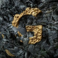 G for Gold #36daysoftype #36days_G #type #typography #G #design #gold #illustration #illustrator #graphicdesign #motiongraphic #lettering #calligraphy #3d #c4d #otoy #octanerender #golden #font #letter #alphabet #cinema4d #vfx #psychedelic #vfx #adobe #photoshop #typo by ferdinando_spagnolo