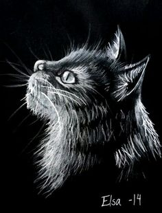 """""""Cat"""" Drawing by @elsa_creative on instagram"""