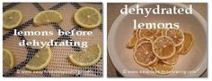 Lemons before and after dehydrating. More info. at www.easy-food-dehydrating.com