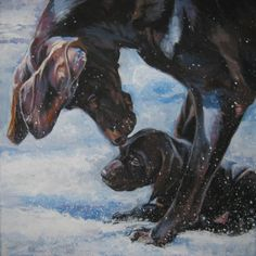 gsp German Shorthaired pointer dog art CANVAS print by TheDogLover