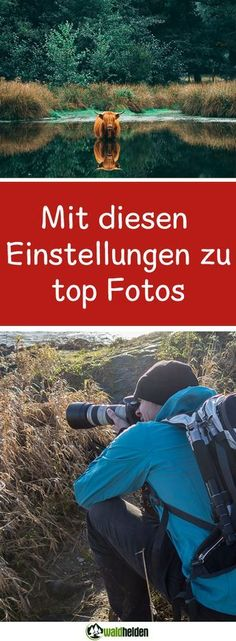 With these settings and this equipment I have the best pictures 2017 succeeded. Animals and nature, but also a beautiful long exposure from Berlin have made it into the selection of the most beautiful photos.