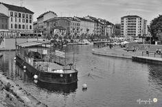 #milanogram2016 #milano_in #milanodavedere #milano_go #vivomilano #volgomilano #vivolombardia #volgolombardia #italiainunoscatto_bnw #top_lombardia_photo #top_italia_photo #italia_photolovers #instamilano #igersmilano #ig_milano #ig_milan by fioregrafia