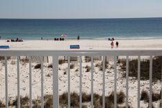 $1080  Royal Palms 201 Gulf Shores Alabama Condo Rentals | Sugar Sands Vacation Rentals