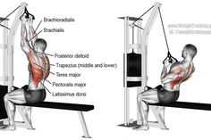Close neutral grip lat pull-down
