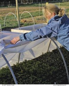 No matter what your climate, these plant shelters expand your gardening options Fine Gardening, Container Gardening, Gardening Tips, Vegetable Gardening, Picnic Blanket, Outdoor Blanket, Cold Frame, Garden Structures, Garden Gates