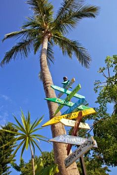 No Street lights! Sanibel Florida, Old Florida, Best Vacation Spots, Best Vacations, Sunshine Love, Captiva Island, Street Lights, Fort Myers Beach, Florida Living