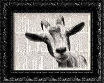 BOGO Sale - Goat Head Vintage Dictionary Print Vintage Book Print Page Art Upcycled Vintage Book Art Vintage Book Art, Vintage Prints, Goat Art, Cow Gifts, Dark Wings, Sick Kids, Cow Print, Upcycled Vintage, Pet Portraits