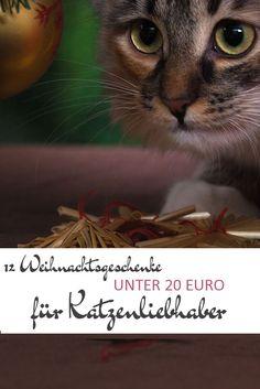 Last minute! 12 Weihnachtsgeschenke unter 20 Euro für Katzenliebhaber