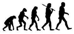 Evolution? or revolution? Survival of the fittest or maybe fit to survive?