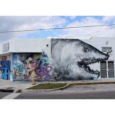 Shark Toof & DianaContreras aka didi in Wynwood, Miami, USA, 2015