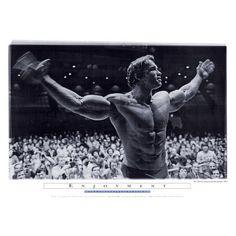 Mr Olympia Arnold Schwarzenegger Enjoyment Movie Poster Print