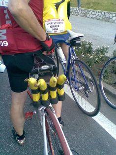 Porta plátanos