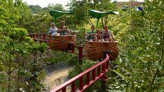 Sei parchi divertimenti ecologici da visitare con i bambini