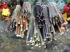 hollow stems of bamboo motherwort Knoeterich stinging nettle Baerenklau u. Wild Bees, Mason Bees, Bee House, Boho Diy, Bee Keeping, Permaculture, Garden Inspiration, Garden Art, Gardening Tips