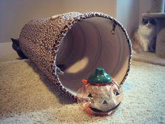 Tunnel Tuesday: A Nip O' Lantern