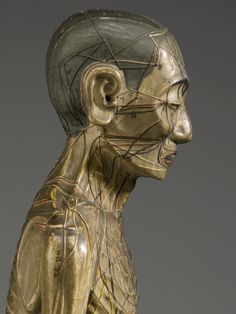 """Chinese Acupuncture Model, c 1600s.  """"The wooden male figure shows the points where needles should be applied to the skin and the meridians through which qi flows in the body.""""  - Science Museum"""