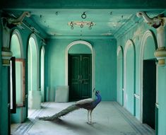 "Karen Knorr.    ""The Queen's Room"", Zanana, Udaipur City Palace"