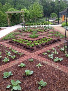 vegetablegardenideas terracegarden vegetable terrace garden – Welcome Potager Garden, Veg Garden, Vegetable Garden Design, Fruit Garden, Terrace Garden, Edible Garden, Garden Beds, Garden Landscaping, Vegetable Gardening