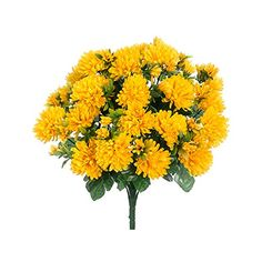 15 Mum Bush x24 Yellow Pack of 12 *** Click image to review more details.