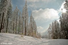 Winter near Szczyrk in the Beskidy Mountains, Silesia Poland, Mountains, Country, Winter, Meet, Outdoor, Winter Time, Outdoors, Rural Area