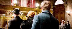 Newt Scamander - Eddie Redmayne  - Fantastic Beasts