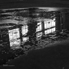 decadence - #GdeBfotografeert