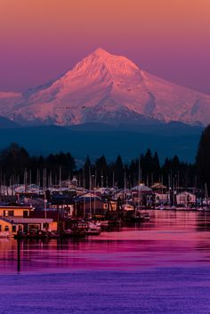Mount Hood at Sunset over the Columbia River, Portland, Oregon. I love Mount Hood! Places To Travel, Places To See, Vacation Places, Beautiful World, Beautiful Places, Amazing Places, Beautiful Scenery, Beautiful Sunset, Wonderful Places