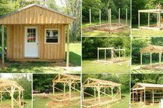 Megan Lea est une conseillère en construction durable certifiée, et c'est une maison durable qu'elle a construit dans sa propre cour. Les mesures de cette mai