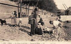 Les petits métiers du Paris d'antan Le laveur de chiens sur les berges de la Seine... (vieille carte postale, vers 1900)