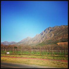 Stellenbosch Mountain Vineyard, Mountains, Nature, Travel, Outdoor, Viajes, Outdoors, Naturaleza, Destinations