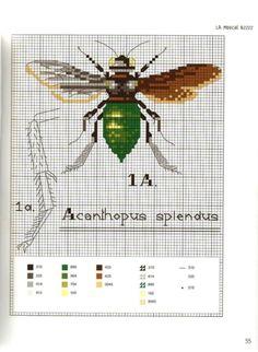 Gallery.ru / Фото #61 - MARABOUT Insects - tatasha