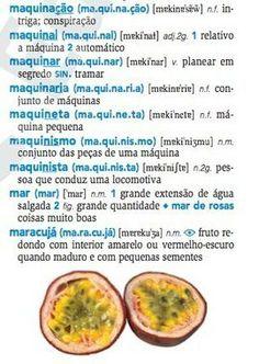 Dicionario da Lingua Portuguesa - Português no Estrangeiro