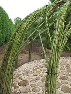 Living Willow Structures of the Hamptons by Bonnie Gale - EXPERIENCE Living Willow Structures from Bonnie Gale...